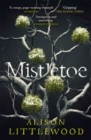 Mistletoe : 'The perfect read for frosty nights' HEAT - Book
