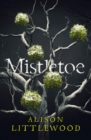 Mistletoe : 'The perfect read for frosty nights' HEAT - eBook