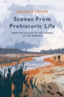 Scenes from Prehistoric Life : From the Ice Age to the Coming of the Romans - Book