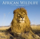 African Wildlife 2021 Wall Calendar - Book
