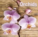 Orchids 2021 wall Calendar - Book