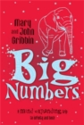 Big Numbers : A Mind-Expanding Trip to Infinity and Back - Book
