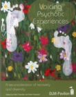 Voicing Psychotic Experiences : A Reconsideration of Recovery and Diversity - Book