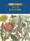 Kew Pocketbooks: Wildflowers - Book