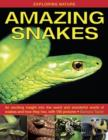 Exploring Nature: Amazing Snakes : an Exciting Insight into the Weird and Wonderful World of Snakes and How They Live, with 190 Pictures - Book
