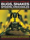 Explore the Deadly World of Bugs, Snakes, Spiders, Crocodiles - Book