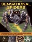 Exploring Nature : Sensational Spiders: A Comprehensive Guide to Some of the Most Intriguing Creatures in the Animal Kingdom, with Over 220 Pictures - Book
