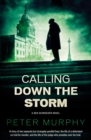 Calling Down The Storm : The Fifth Ben Schroeder Legal Thriller - Book