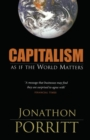 Capitalism As If the World Matters - Book