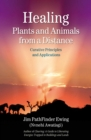 Healing Plants and Animals from a Distance : Curative Principles and Applications - eBook