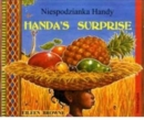 Handa's Surprise in Polish and English - Book
