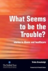 What Seems to be the Trouble? : Stories in Illness and Healthcare - Book