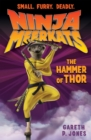 The Hammer of Thor - Book
