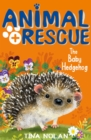 The Baby Hedgehog - Book
