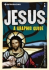 Introducing Jesus : A Graphic Guide - Book