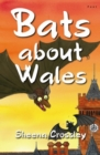 Out and About in Wales: Bats About Wales - Book