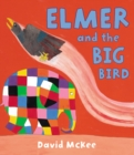 Elmer and the Big Bird - eBook