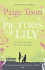 Pictures of Lily - eBook