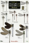 Guide to the Dragonflies and Damselflies of Britain - Book
