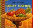 Handa's Surprise in Panjabi and English - Book