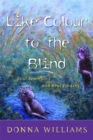 Like Colour to the Blind : Soul Searching and Soul Finding - Book