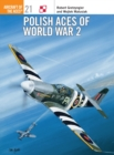 Polish Aces of World War 2 - Book