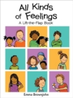 All Kinds of Feelings : a Lift-the-Flap Book - Book