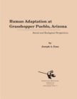 Human Adaptation at Grasshopper Pueblo, Arizona : Social and Ecological Perspectives - Book