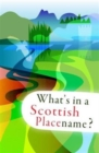 What's in a Scottish Placename? - Book