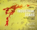 Industrial Scars : The Hidden Cost of Consumption - Book