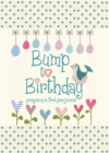 Bump to Birthday, Pregnancy & First Year Journal -