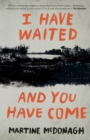 I Have Waited, and You Have Come - eBook