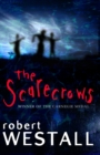 Scarecrows - Book