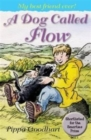 A Dog Called Flow - Book