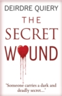 Secret Wound - Book