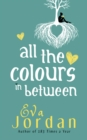 All The Colours In Between - Book