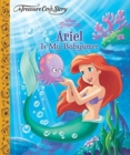 A Treasure Cove Story - Ariel is my Babysitter - Book