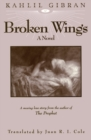 Broken Wings - eBook
