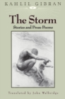 The Storm - eBook
