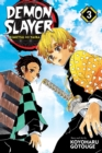 Demon Slayer: Kimetsu no Yaiba, Vol. 3 - Book