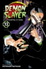 Demon Slayer: Kimetsu no Yaiba, Vol. 13 : Transitions - Book