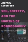 Sex, Society, and the Making of Pornography : The Pornographic Object of Knowledge - eBook