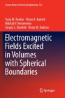 Electromagnetic Fields Excited in Volumes with Spherical Boundaries - Book