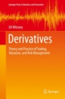 Derivatives : Theory and Practice of Trading, Valuation, and Risk Management - eBook