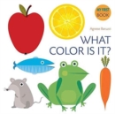 What Color Is It? - Book