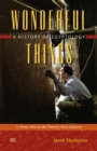 Wonderful Things : A History of Egyptology: 3:  From 1914 to the Twenty-first Century - Book