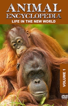 Animal Encyclopedia: Volume 1 - Life in the New World, DVD  DVD