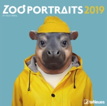 2019 ZOO PORTRAITS 30 X 30 GRID CALENDAR,  Book
