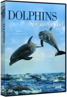 Dolphins: Spy in the Pod, DVD  DVD