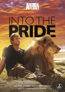 Discovery Channel: Into the Pride, DVD  DVD